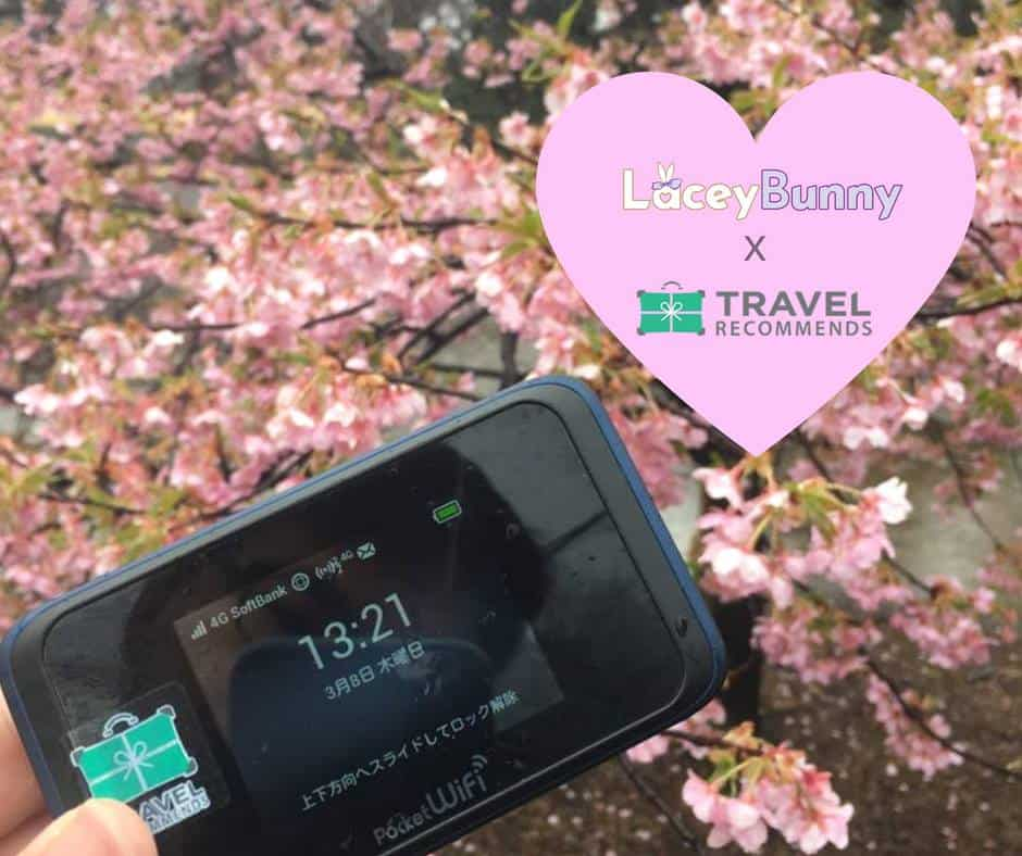 LaceyBunny x Travel Recommends