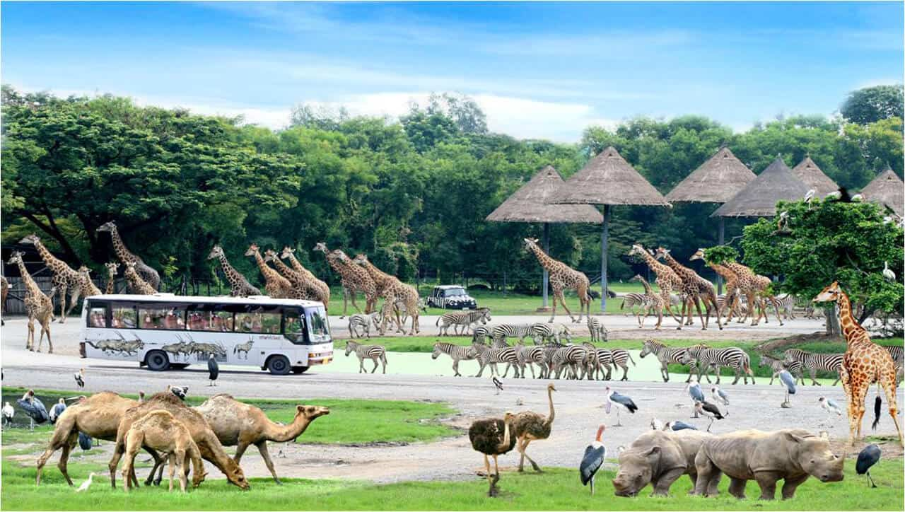 Safari World with Marine Park Bangkok Tour