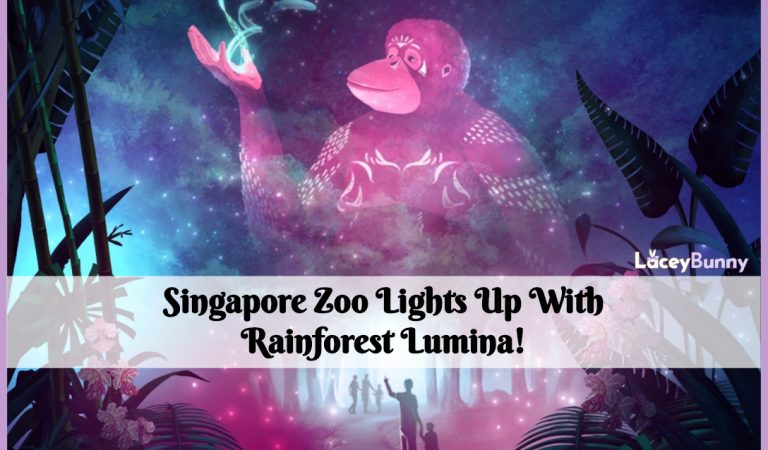 Singapore Zoo Lights Up With Rainforest Lumina!